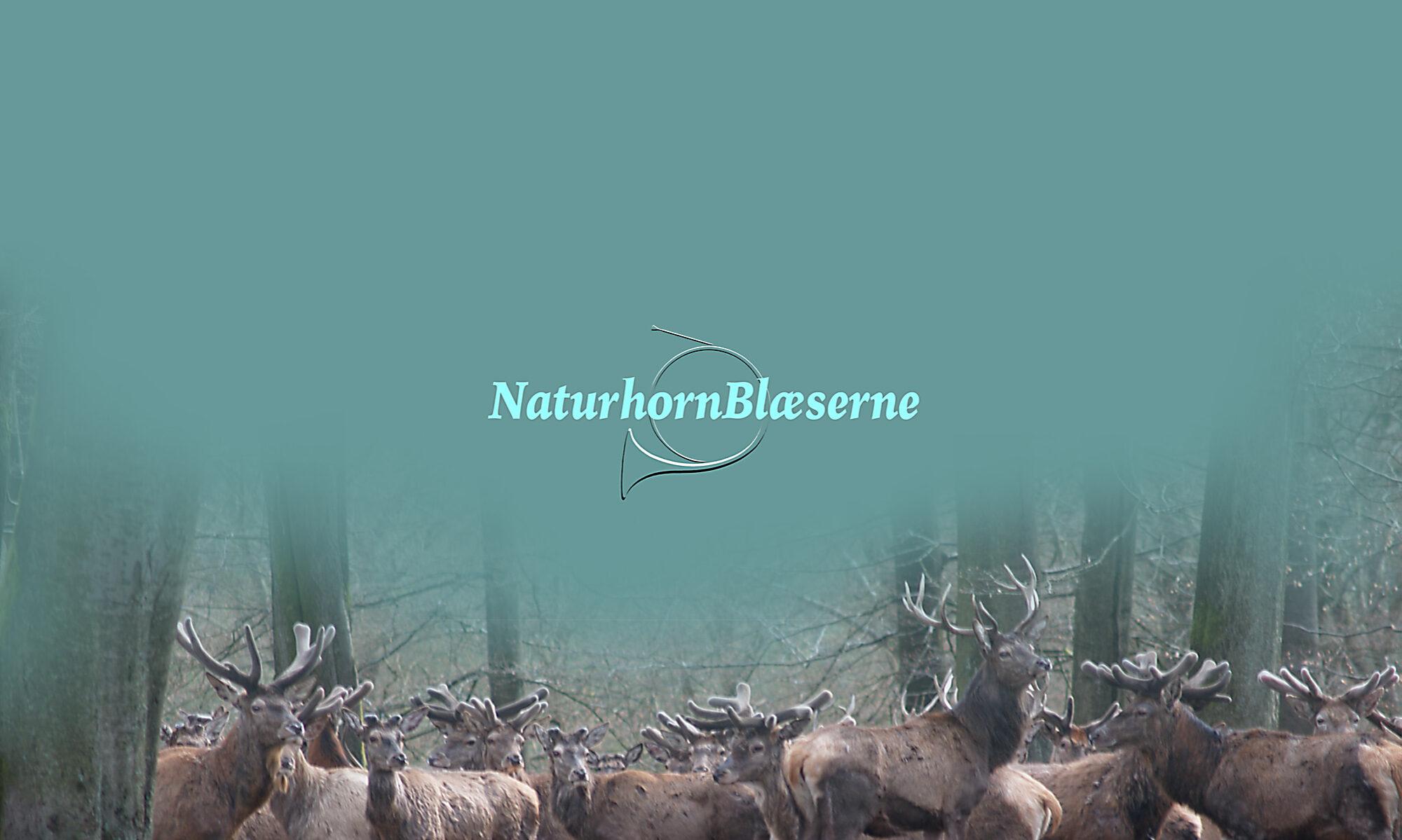 NaturhornBlæserne